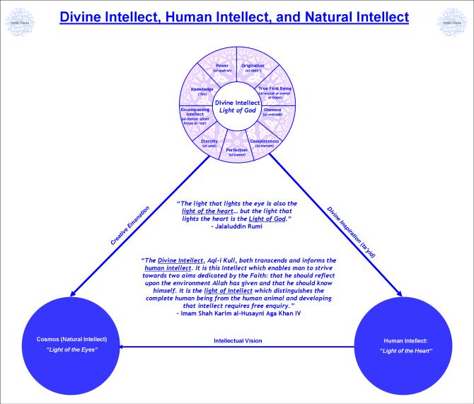 Divine Intellect