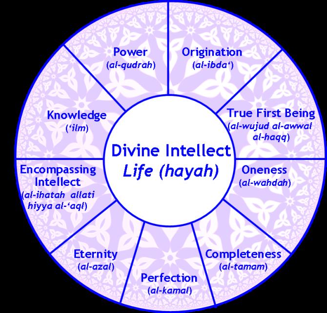 Kirmani Intellect